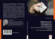 Bookcover of Multichannel-Management im Tourismus