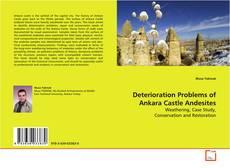 Buchcover von Deterioration Problems of Ankara Castle Andesites