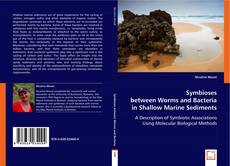 Buchcover von Symbioses between Worms and Bacteria in Shallow Marine Sediments