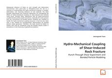 Bookcover of Hydro-Mechanical Coupling of Shear-Induced Rock Fracture