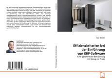 Copertina di Effizienzkriterien bei der Einführung von ERP-Software