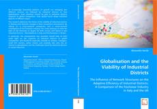Globalisation and the Viability of Industrial Districts kitap kapağı