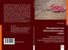 Management von Überschwemmungsrisiken kitap kapağı