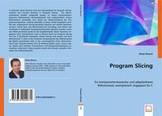 Capa do livro de Program Slicing