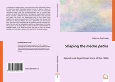 Обложка Shaping the madre patria