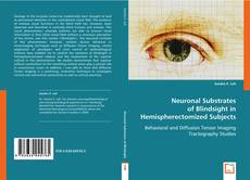 Bookcover of Neuronal Substrates of Blindsight in Hemispherectomized Subjects