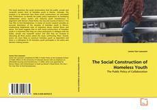 Обложка The Social Construction of Homeless Youth