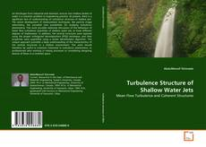 Bookcover of Turbulence Structure of Shallow Water Jets
