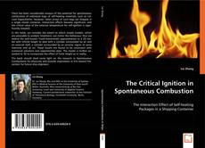 Bookcover of The Critical Ignition in Spontaneous Combustion
