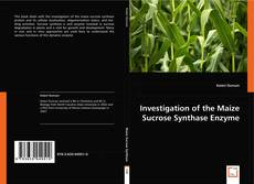 Investigation of the Maize Sucrose Synthase Enzyme的封面