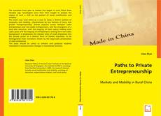 Paths to Private Entrepreneurship的封面