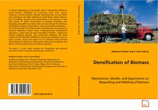Bookcover of Densification of Biomass