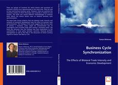 Bookcover of Business Cycle Synchronization