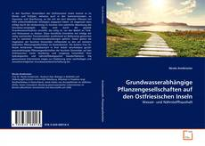 Grundwasserabhängige Pflanzengesellschaften auf den Ostfriesischen Inseln kitap kapağı
