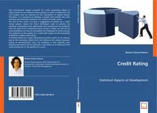 Credit Rating kitap kapağı