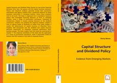 Bookcover of Capital Structure and Dividend Policy