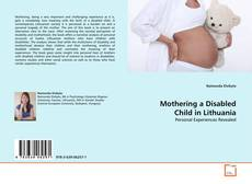 Capa do livro de Mothering a Disabled Child in Lithuania