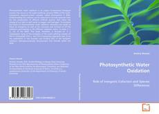 Bookcover of Photosynthetic Water Oxidation