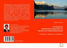 Обложка Strategisches Sicherheitsmanagement im Rahmen von Naturkatastrophen