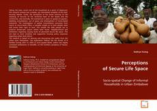 Bookcover of Perceptions of Secure Life Space