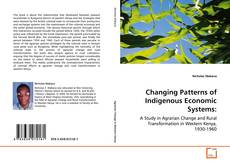 Bookcover of Changing Patterns of Indigenous Economic Systems: