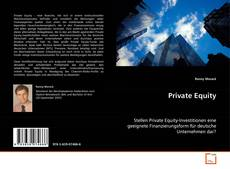 Bookcover of Private Equity