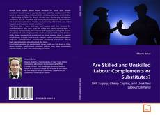 Bookcover of Are Skilled and Unskilled Labour Complements or Substitutes?