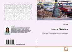 Bookcover of Natural Disasters