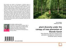 Portada del libro de plant diversity under the canopy of tree plantation of Wondo Genet