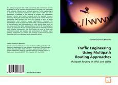 Traffic Engineering Using Multipath Routing Approaches kitap kapağı