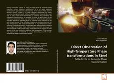 Capa do livro de Direct Observation of High-Temperature Phase transformations in Steel