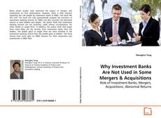 Bookcover of Why Investment Banks Are Not Used in Some Mergers