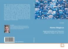 Bookcover of Homo Magicus