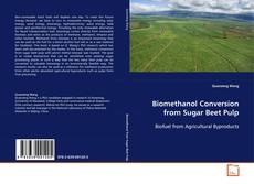 Buchcover von Biomethanol Conversion from Sugar Beet Pulp