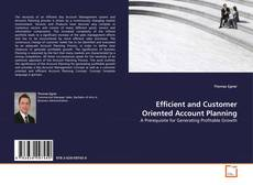 Borítókép a  Efficient and Customer Oriented Account Planning - hoz