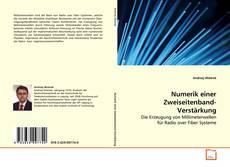 Bookcover of Numerik einer Zweiseitenband-Verstärkung