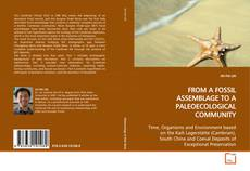 Couverture de FROM A FOSSIL ASSEMBLAGE TO A PALEOECOLOGICAL COMMUNITY
