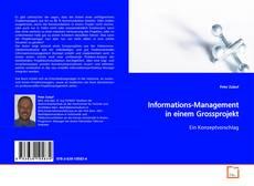 Обложка Informations-Management in einem Grossprojekt