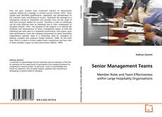 Senior Management Teams kitap kapağı