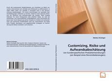 Buchcover von Customizing, Risiko und Aufwandsabschätzung