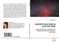 Buchcover von MAGNETIC FLUX TUBES IN LATE-TYPE STARS