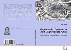 Bookcover of Magnetization Dynamics in Short Magnetic Field Pulses