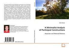 Bookcover of A Minimalist Analysis of Participial Constructions