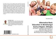 Bookcover of Alternative Basic Education in Benishangul Gumuz Region, Ethiopia