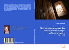 Die Entstehungsphase des Zentraluntersuchungsgefängnis Luzern kitap kapağı