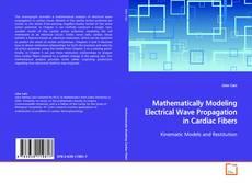 Mathematically Modeling Electrical Wave Propagation in Cardiac Fibers kitap kapağı