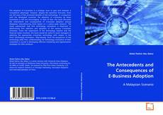 Capa do livro de The Antecedents and Consequences of E-Business Adoption