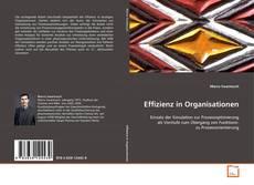 Copertina di Effizienz in Organisationen