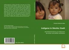 Buchcover von Indigene in Mexiko Stadt
