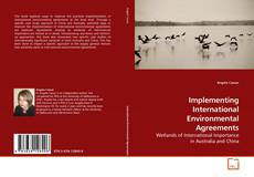 Implementing International Environmental Agreements kitap kapağı